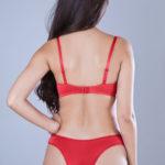 conjunto-lingerie-calcinha-e-sutien-de-microfibra-e-renda-linha-explendore-5