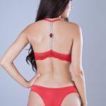 conjunto-lingerie-calcinha-e-sutien-renda-e-microfibra-linha-cristal-1
